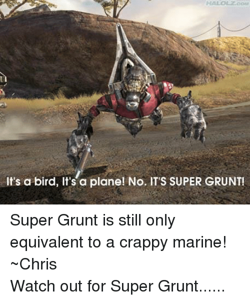 """Halo, Birds, and Marines: It's a bird, It's a plane! No. IT""""S SUPER GRUNT! Super Grunt is still only equivalent to a crappy marine! ~ChrisWatch out for Super Grunt......"""