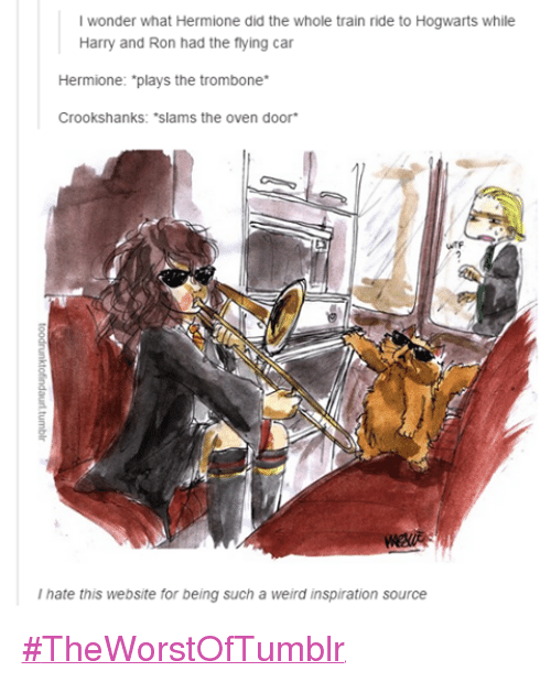 train ride: l wonder what Hermione did the whole train ride to Hogwarts while  Harry and Ron had the flying car  Hermione: plays the trombone  Crookshanks: *Slams the oven door  hate this website for being such a weird inspiration source #TheWorstOfTumblr