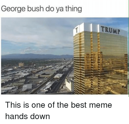 Meme, Memes, and Best: George bush do ya thing  TRUMP This is one of the best meme hands down