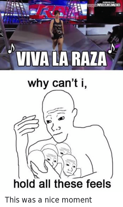 All These Feels: STING  VIVA LA RAZA  why can't i,  hold all these feels This was a nice moment