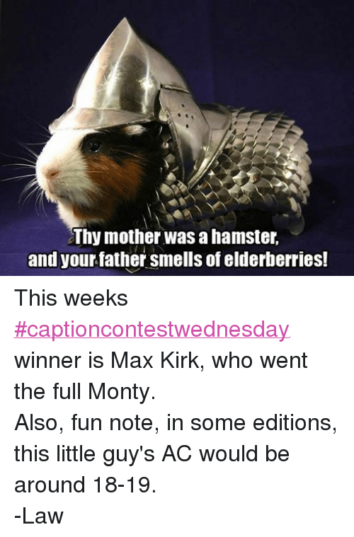 Smell, Hamster, and DnD: Thy mother was a hamster,  and your father smells of elderberries! This weeks #captioncontestwednesday winner is Max Kirk, who went the full Monty.  Also, fun note, in some editions, this little guy's AC would be around 18-19.  -Law