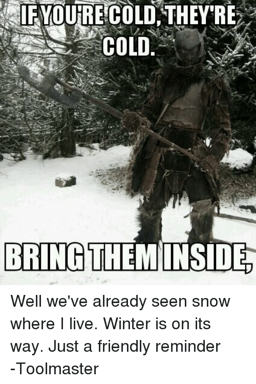 DnD: YOURE COLD THEY'RE  COLD  BRING  THEMINSIDE Well we've already seen snow where I live. Winter is on its way. Just a friendly reminder -Toolmaster