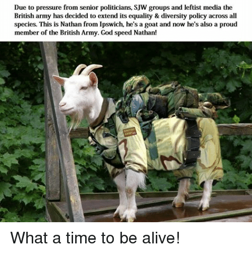 Alive, God, and Pressure: Due to pressure from senior politicians, SJW groups and leftist media the  British army has decided to extend its equality & diversity policy across all  species. This Nathan from Ipswich, he's a goat and now he's also a proud  member of the British Army. God speed Nathan! What a time to be alive!