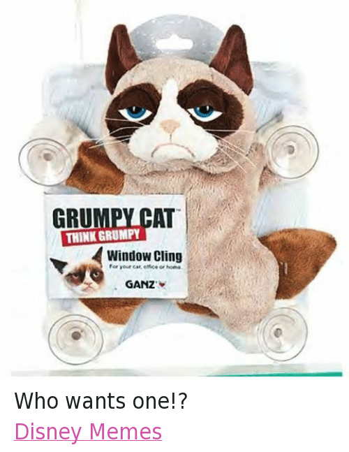 Gru: THINK CAT  GRU  GRUMPY  Window Cling  or home.  GANZ Who wants one!? Disney Memes