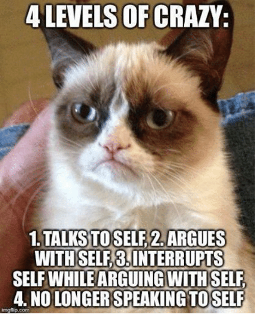 crazy talk: 4 LEVELS OF CRAZY.  TALKS TOSELF2. ARGUES  WITH SELF 8,INTERRUPT  SELF WHILE ARGUING WITHSELF  4 NOLONGER SPEAKING TO SELF  imgflip com