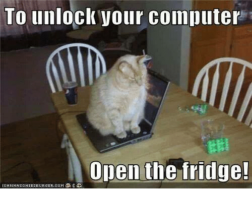 To Unlock Your Computer Open the Fridge! | Cats Meme on SIZZLE