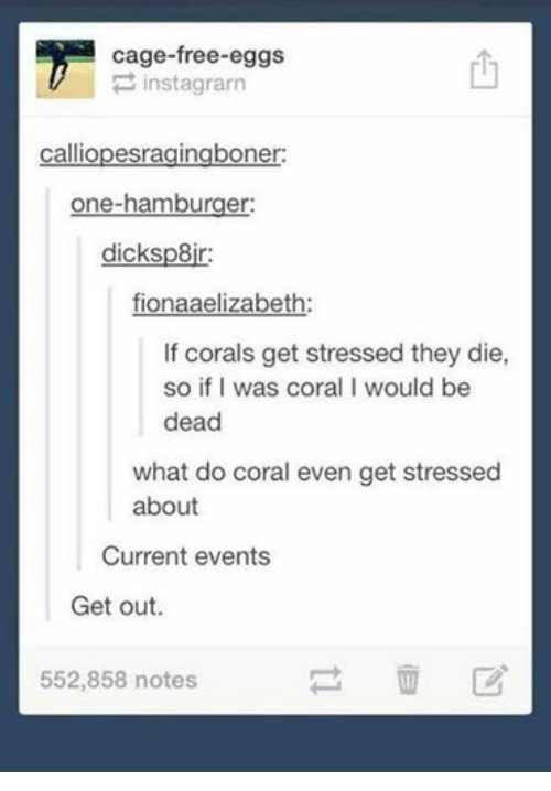 Current Event: cage-free eggs  inst agrarn  calliopesragingboner:  one-hamburger:  dicksp8jr:  fionaaelizabeth:  If corals get stressed they die,  so if I was coral I would be  dead  what do coral even get stressed  about  Current events  Get out.  552,858 notes