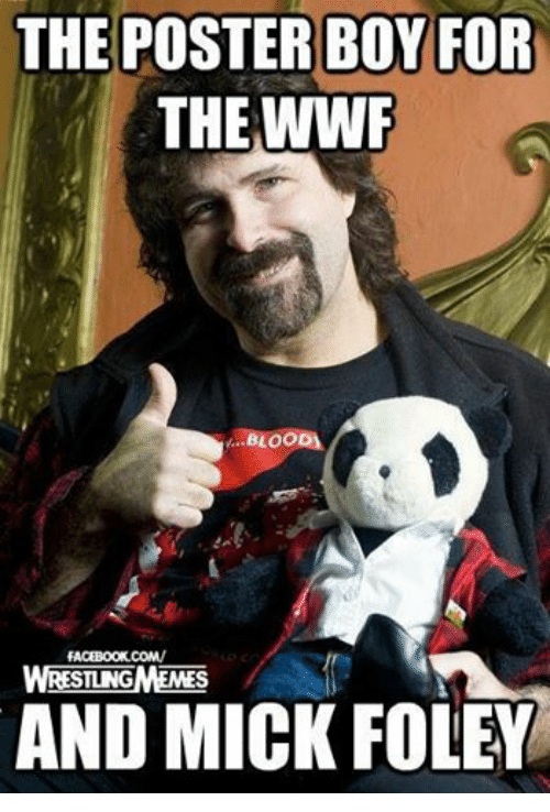 mick foley: THE POSTERBOY FOR  THE WWF  BLOOD)  FACEBOOK COM/  STING  AND MICK FOLEY