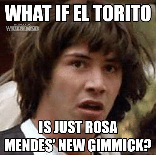 rosa mendes: WHAT IF EL TORITO  SILNG  IS JUST ROSA  MENDES NEW GIMMICK?