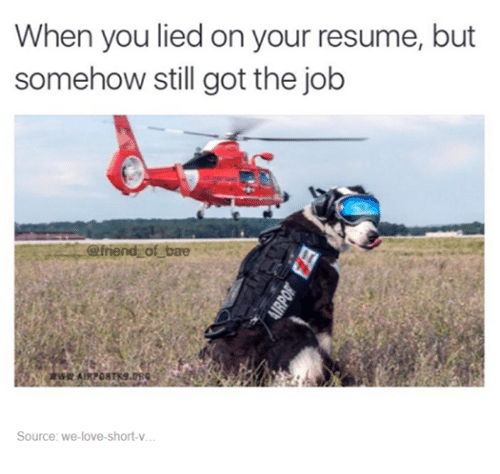 Bae, Friends, and Love: When you lied on your resume, but  somehow still got the job  friend of bae  WRAIRPOR  Source: we love short-v