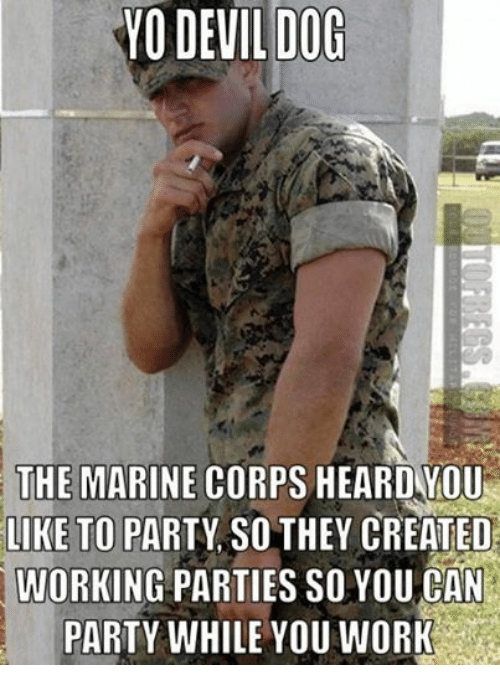 Dogs, Party, and Work: DEVIL DOG  THE MARINE CORPS HEARDYOU  LIKE TO PARTY SOTHEY CREATED  WORKING PARTIES SO YOU CAN  PARTY WHILE YOU WORK
