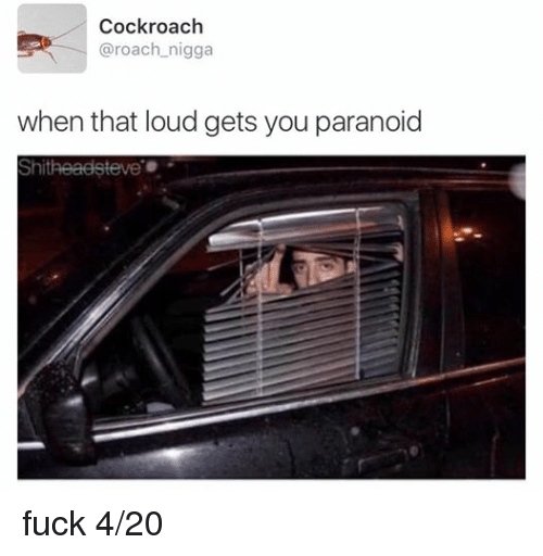 4:20: Cockroach  @roach nigga  when that loud gets you paranoid  Shitheadsteve fuck 4/20