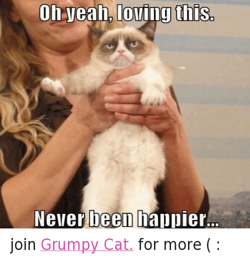 People Magazine Trump Quote 1998: 25+ Best Memes About Cats, Grumpy Cat, Love, And Yeah