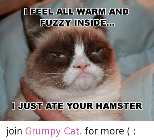 [Image: Facebook-join-Grumpy-Cat-for-more-df19e0.png]
