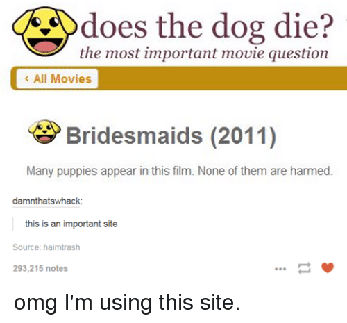 Doe, Dogs, and Funny: does the dog die?  the most important movie question  All Movies  Bridesmaids (2011)  Many puppies appear in this film. None of them are harmed.  damnthatswhack  this is an important site  Source: haimtrash  293,215 notes omg I'm using this site.