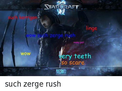 Doge, Scare, and Wow: WOW  WOW  linge  many pet  ery teeth  SO Scare such zerge rush