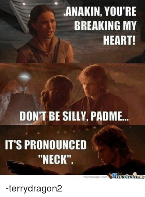 "Star Wars: ANAKIN, YOU'RE  BREAKING MY  HEART!  DON'T BE SILLY, PADME...  IT'S PRONOUNCED  ""NECK"".  Memecenter -terrydragon2"