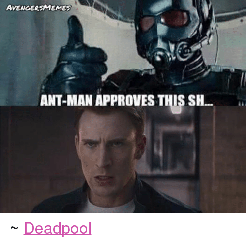 ant man: AVENGERSMEMES  ANT-MAN APPROVES THIS SH. ~ Deadpool