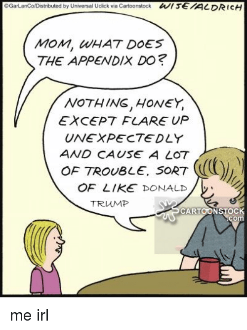 gall tributed by universal ucick via cartoonstock wise aldrich mom, Sphenoid