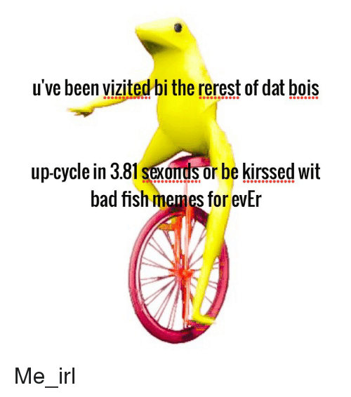 Bad, Meme, and Memes: u've been vizited bi the rerest of dat bois  up-cycle in 3.81 sexondsor be kirssed wit  bad fish memes for evEr Me_irl