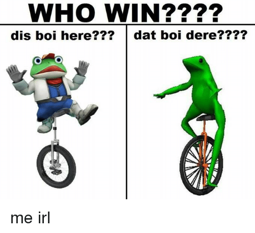 Irl, Me IRL, and Dat Boi: WHO WIN?  dis boi here  dat boi dere me irl