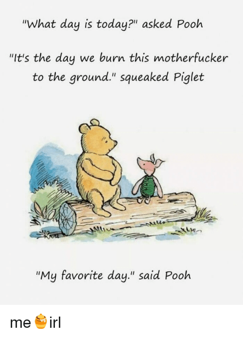 """Today, Irl, and Me IRL: """"What day is today?"""" asked Pooh  """"It's the day we burn this motherfucker  to the ground."""" squeaked Piglet  """"My favorite day."""" said Pooh me🍯irl"""