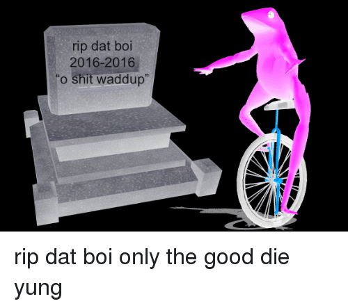 "Good, Dat Boi, and Boi: rip dat boi  2016-2016  ""o shit waddup"" rip dat boi only the good die yung"