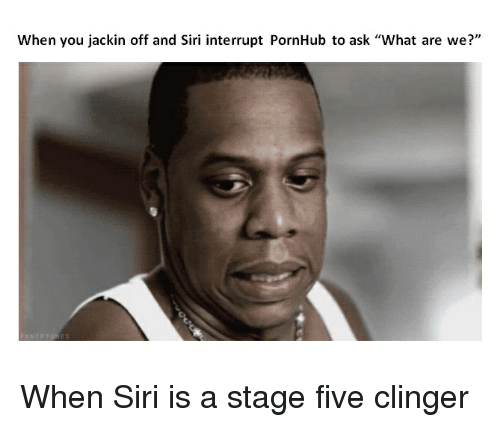 "Pornhub, Siri, and Asking: When you jackin off and Siri interrupt PornHub to ask ""What are we?"" When Siri is a stage five clinger"