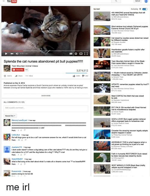After zoo explodes by bmcatbreedersassoc 20 878 views 7 0 teen