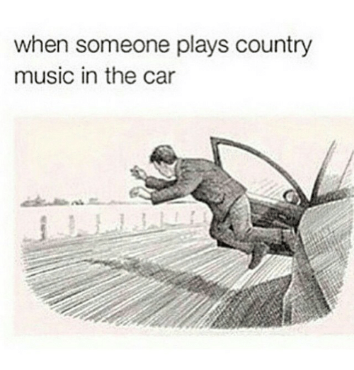 Cars, Funny, and Meme: when someone plays country  music in the car