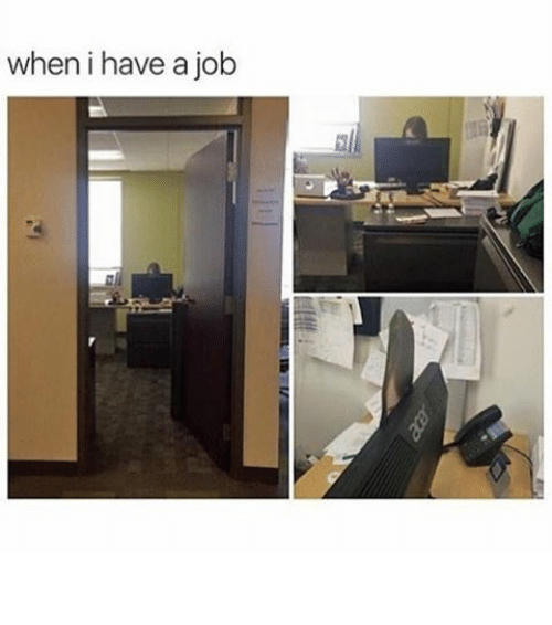 Funny, Memes, and Jobs: when i have a job ⠀