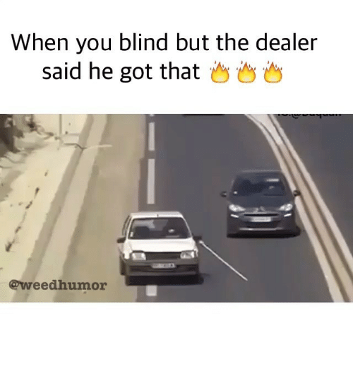 Weed, Marijuana, and Got: When you blind but the dealer  said he got that  @weed humor
