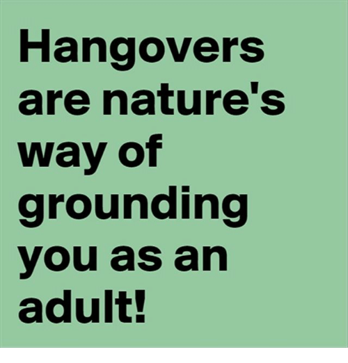 Funny, Hangover, and Nature: Hangovers  are nature's  way of  grounding  you as an  adult!