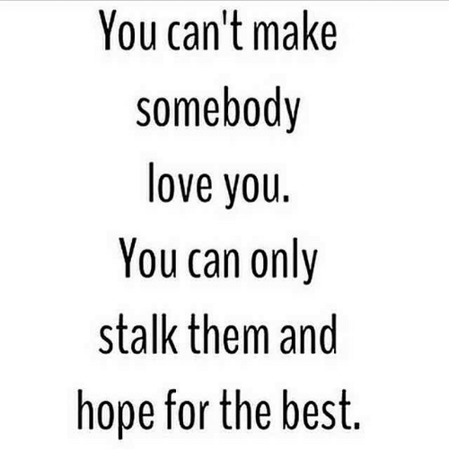 Funny, Love, and Stalking: You can't make  Somebody  love you.  You can only  stalk them and  hope for the best