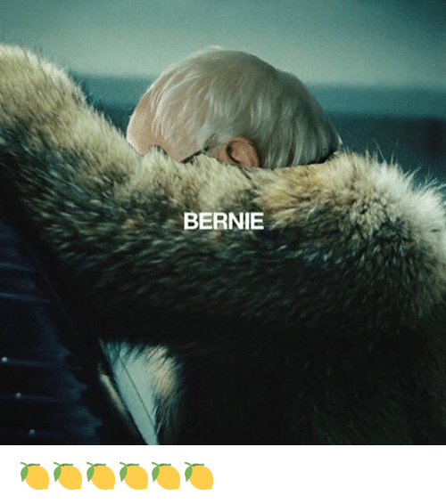 Funny and Bernie: BERNIE 🍋🍋🍋🍋🍋🍋