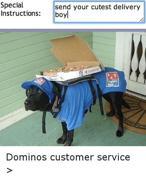 Dominoes: Special  send your cutest delivery  Instructions  boyl Dominos customer service >