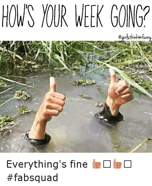 Everything Is Funny Meme : Hows nur week gonga everything s fine fabsquad