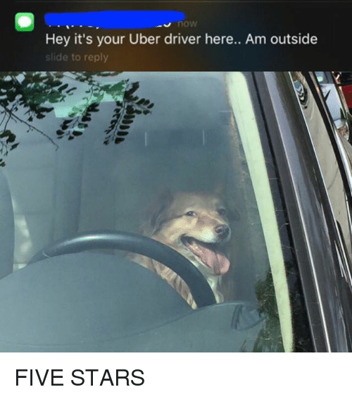 Funny, Uber, and Star: Hey it's your Uber driver here.. Am outside  slide to reply FIVE STARS