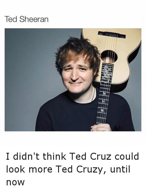 Funny, Ted, and Ted Cruz: Ted Sheeran I didn't think Ted Cruz could look more Ted Cruzy, until now