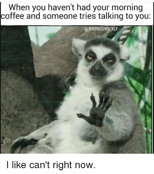 When You Haven't Had Your Morning Coffee and Someone Tries ...
