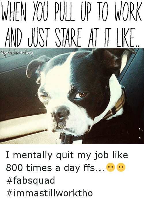 Funny Quit Job Meme : When pull up to work and lust sare attle i mentally quit