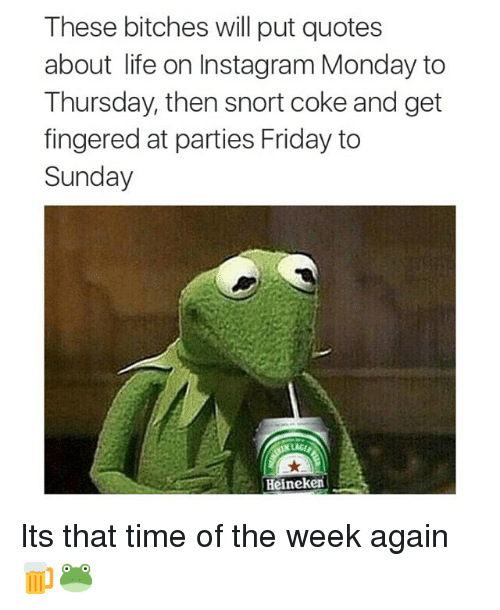 quotes about life: These bitches will put quotes  about life on Instagram Monday to  Thursday, then snort coke and get  fingered at parties Friday to  Sunday  Heineken Its that time of the week again 🍺🐸