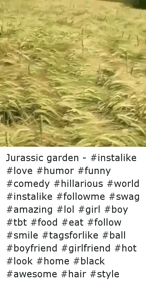 Food, Funny, and Girls: Jurassic garden--instalike love humor funny comedy  hillarious world instalike followme swag amazing  lol girl boy tbt food  eat follow smile tagsforlike ball -boyfriend girlfriend hot look home black  awesome hair style