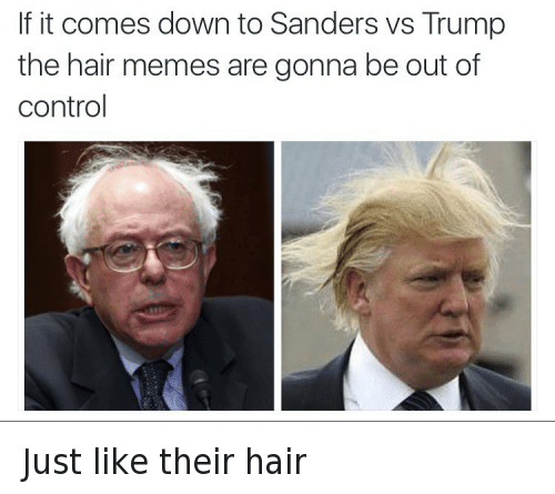 Bernie Sanders, Donald Trump, and Haircut: @tank.sinatra  If it comes down to Sanders vs Trump the hair memes are gonna be out of control Just like their hair