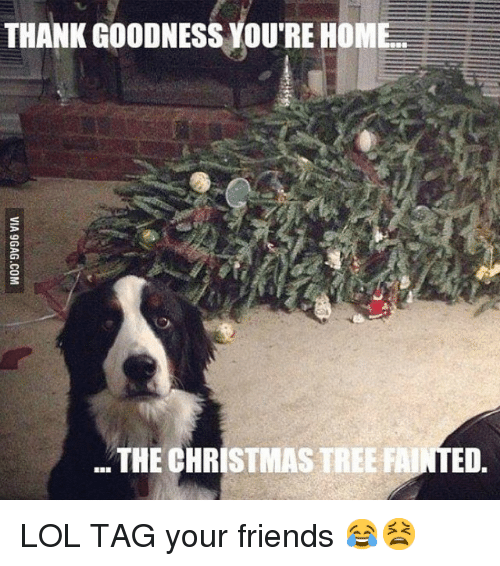 Funny Christmas Memes For Friends : Best memes about christmas friends and funny