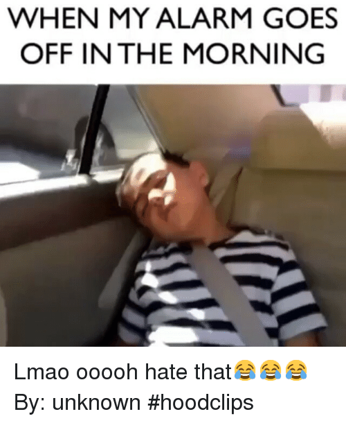 Funny: WHEN MY ALARM GOES  OFF IN THE MORNING Lmao ooooh hate that😂😂😂-By: unknown-hoodclips