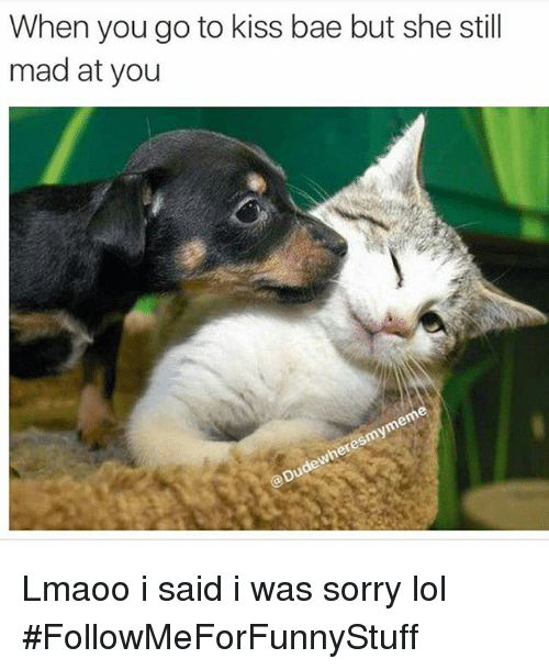 Still Mad At You: When you go to kiss bae but she still  mad at you Lmaoo i said i was sorry lol -FollowMeForFunnyStuff