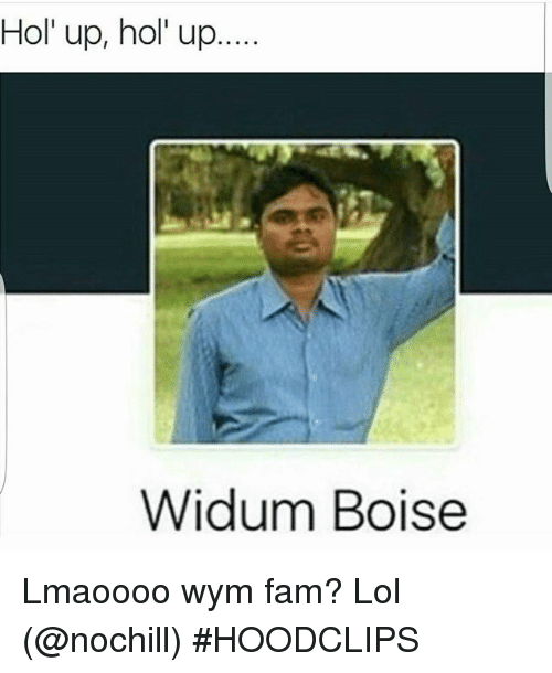 Fam, Funny, and Lol: Hol' up, hol' up...  Widum Boise Lmaoooo wym fam? Lol (@nochill)-HOODCLIPS