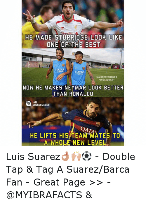 Meme, Memes, and Neymar: HE MADE STURRIDGE LOOK LIKE  ONE OF THE BEST  QATAR  QATAR  IAMSOCCERMEMES  NSTAGRAM  NOW HE MAKES NEYMAR LOOK BETTER  THAN RONALDO  SOCCER MEMES  QATA  HE LIFTS HIS TEAM MATES TO  A WHOLE NEW LEVEL Luis Suarez👌🙌⚽️ -Double Tap & Tag A Suarez-Barca Fan - -Great Page >> -  @MYIBRAFACTS &
