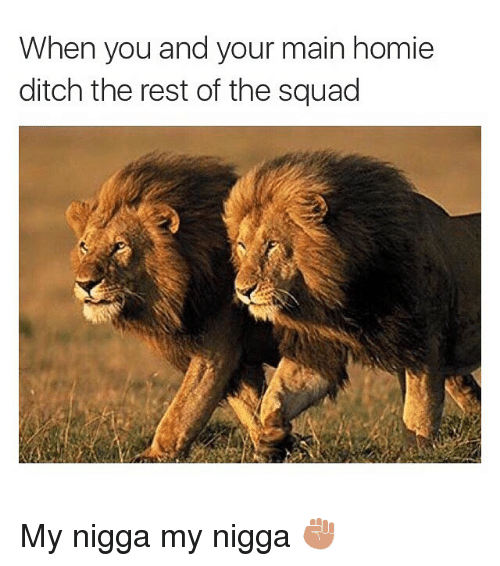 Funny, Homie, and Memes: When you and your main homie  ditch the rest of the squad My nigga my nigga ✊🏽